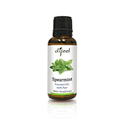 tn-se14-spearmint